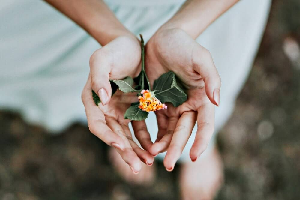 Como Aprender Reiki: 5 factores a considerar